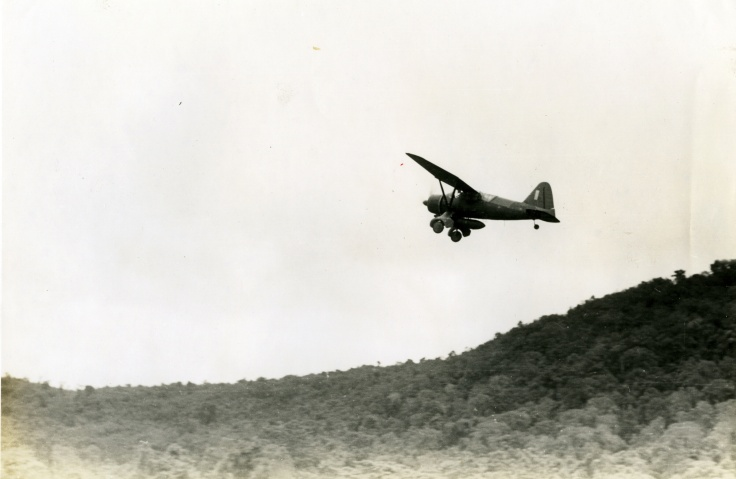 Lysander in flight